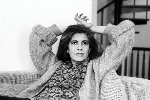 susan sontag the pornographic imagination